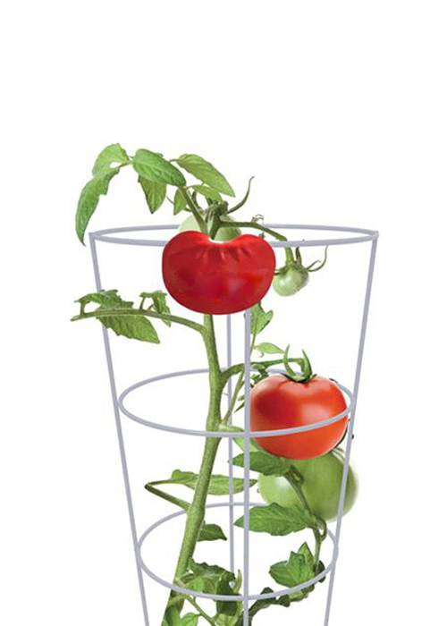 Square Tomato Tower – Easy Way to Stake Tomatoes Without Tying